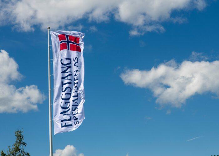 Logoflagg